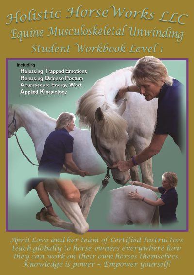 Level 1 Workbook